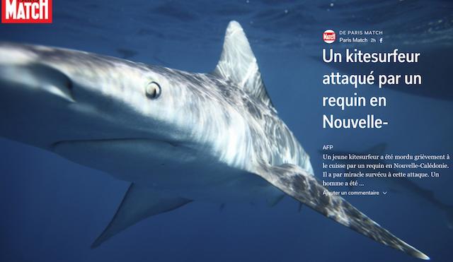 Attaque de requin en Nouvelle Calédonie