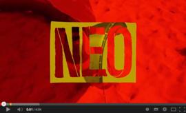 North Neo 2014