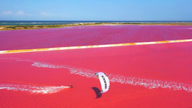 Ricardo Campello voit la vie en rose
