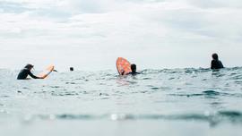 Tous en surf avec le team Softech !