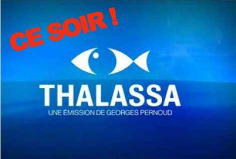 Rappel Thalassa ce soir !