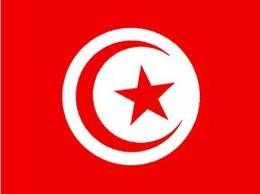 Du kite en Tunisie