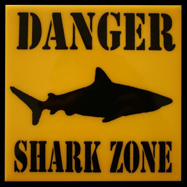 Attaque de requin à Saint Leu - Réunion