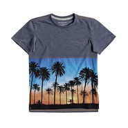 T-SHIRT QUIKSILVER MOKU FOREST BOY ENFANT NAVY